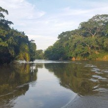 canoe on the belize river